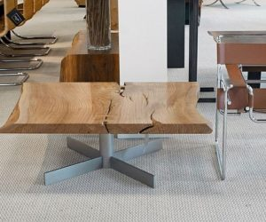 The unique elm slab coffee table