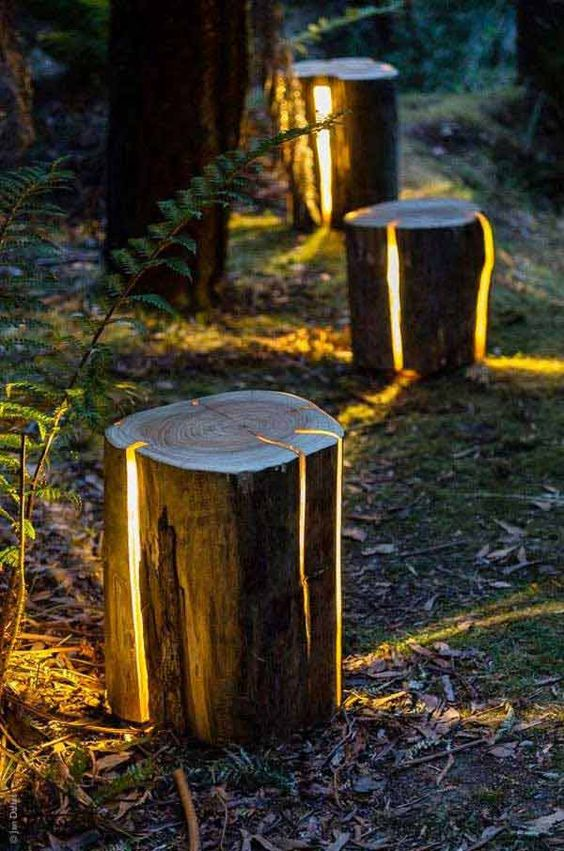 modern wood logs stump with light