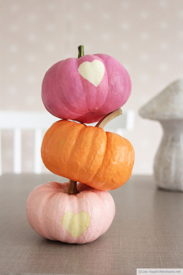 Colorful mini pumpkins