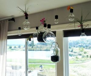 DIY Hanging Planters That Will Make Your Home Fresher Than Ever