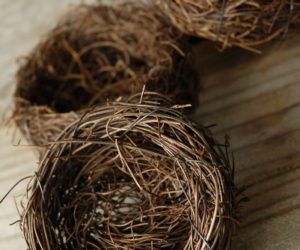 Refreshing Ceramic Bird Bath · Natural Vine Bird Nests
