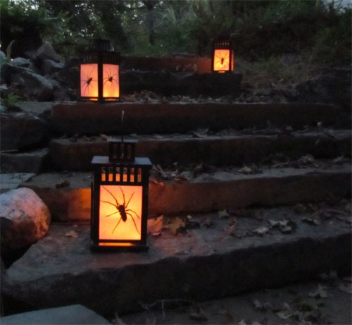 diy outdoor halloween lanterns with spiders inside 500x461 - How To Make Halloween Lanterns