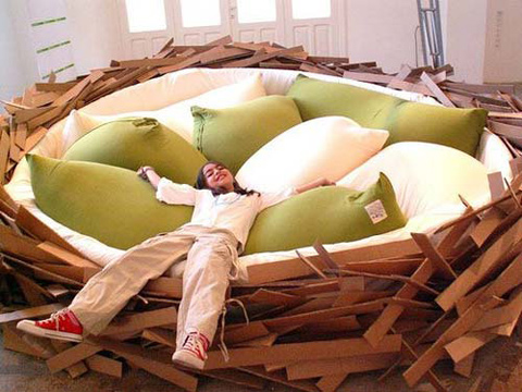 Interesting Bird Nest Giant Bed