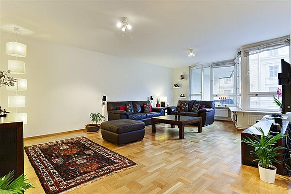 Masculine apartment decoration