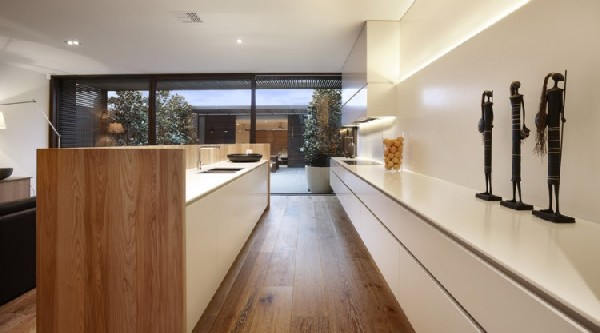 Carpenter Street Residence kitchen