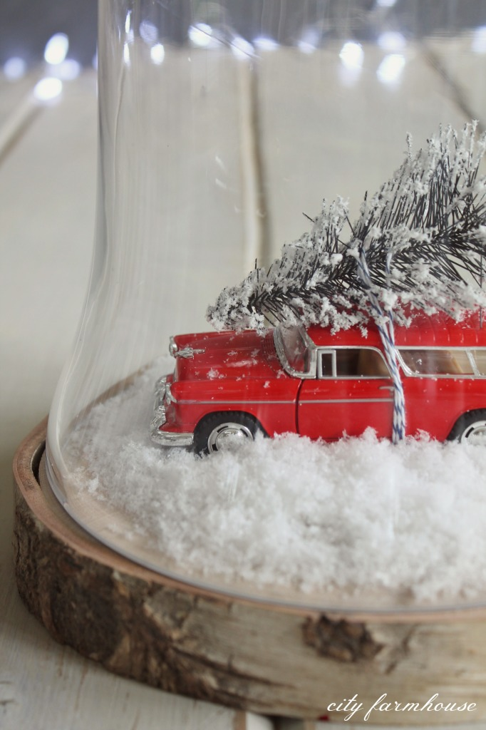 Decorative Winter Terrariums You Can Make Using Everyday