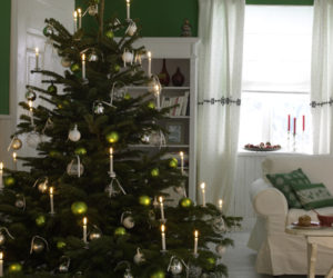 Where To Put The Christmas Tree a few tips that can help you keep your christmas tree fresh and