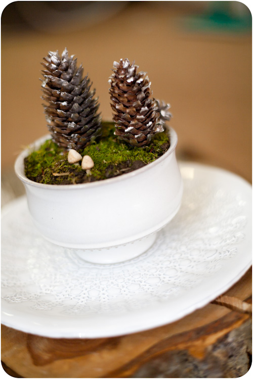 diy-winter-terrarium-to-bring-some-nature-in-your-home-1