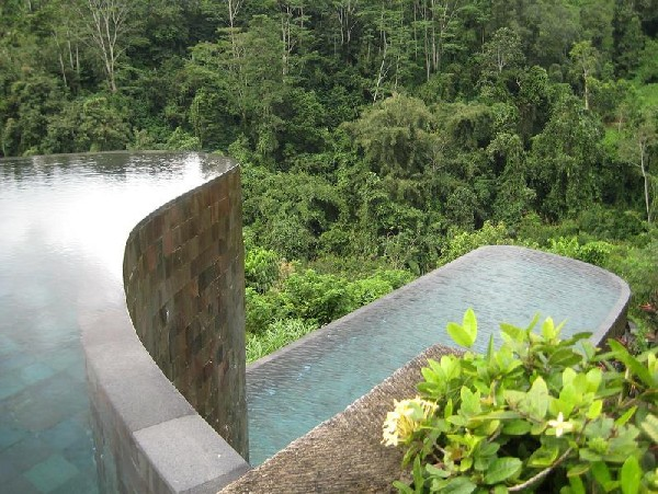 The Ubud Hotel Resort In Bali With Infinity Pool