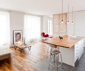 Chic loft in Paris Featuring A Industrial-Danish Design