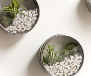 Lovely DIY Terrarium Magnets