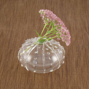 Beautiful Sea Urchin Vase