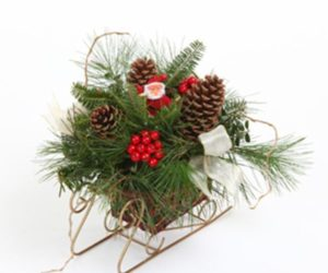 Santa's Sleigh Fresh Mountain Evergreens Holiday Centerpiece