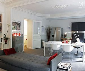 Another type of Parisian apartment