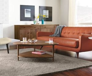 The Pumpkin Color Anson Sofa