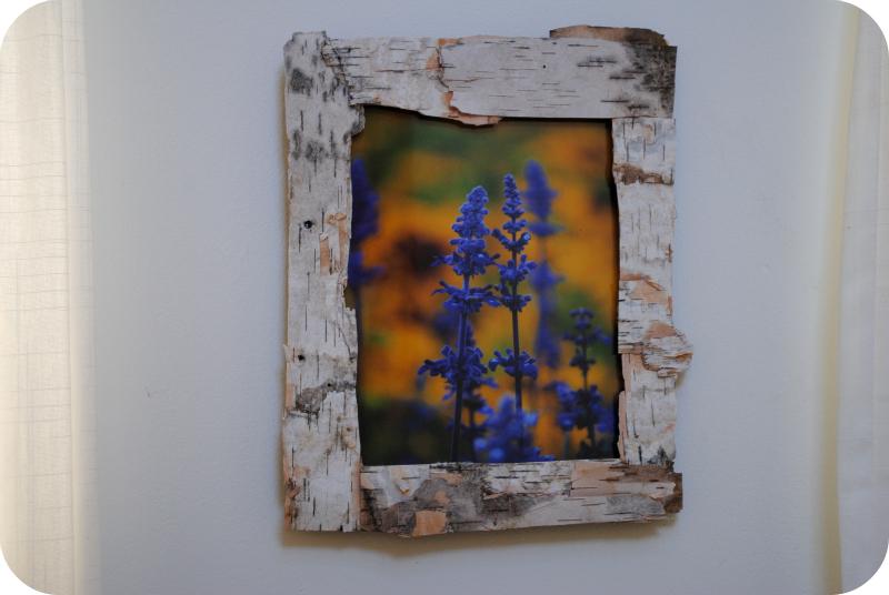 Classy Birch Photo Frame