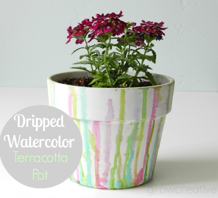 Dripped watercolor terracotta pot