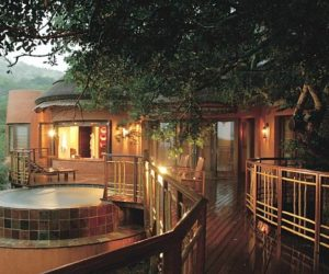 The Luxury South African Thanda Private Game Reserve