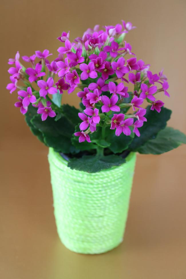 Neon flower vase