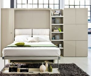 Storage wall with Pull-Down Double Bed