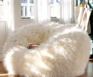 Furry and cozy beanbags