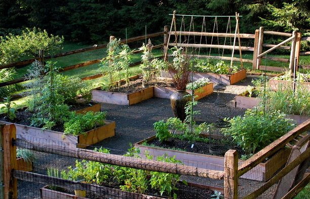 raised beds for garden