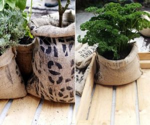 Top 21 Planters – DIY and Recycled | title
