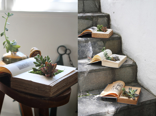 Top 30 planters diy and recycled view in gallery solutioingenieria Gallery