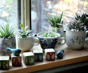 Yogurt Containers: Easy DIY Planters.