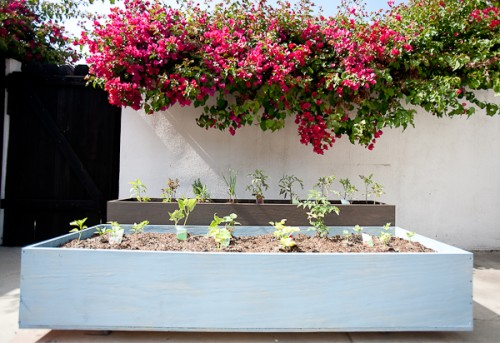 Outdoor Wood Planters On Casters.