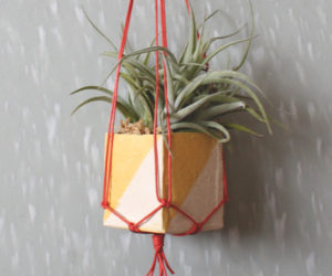Mini Hanging Planters Design Ideas