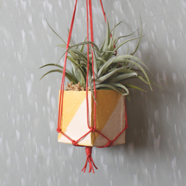 Perfect Mini Hanging Planters Pictures Gallery