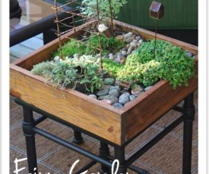 DIY Miniature tabletop garden