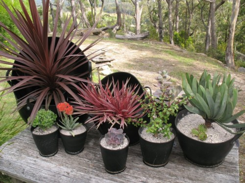 Top 30 planters diy and recycled for Using tyres as planters