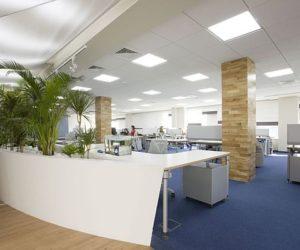 Yandex Odessa Office Interior Design
