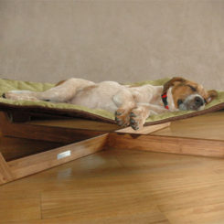 Awesome Comfortable Bamboo Hammock Dog Bed Photo Gallery
