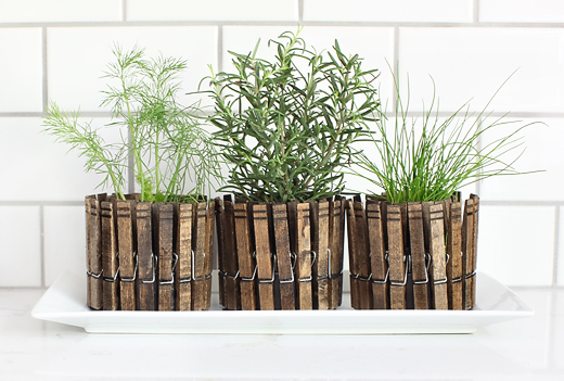 Clothespins herb planter