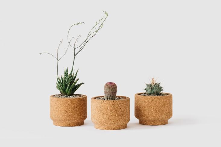Cork pot planters