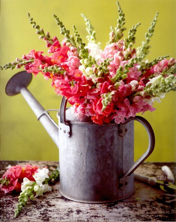 Flower Vase From A Watering Can