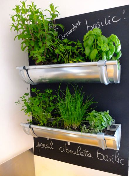 Gutters repurposed for herbs
