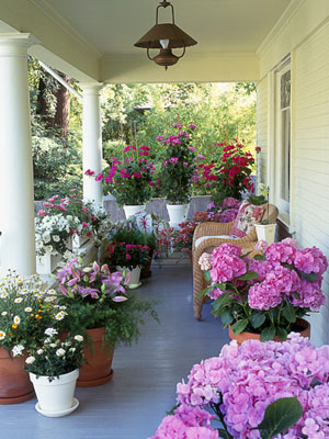 4 Easy Ideas For Decorating With Potted Flowers