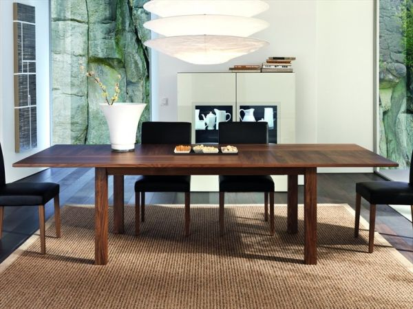 Innovative Rectangular Dining Table