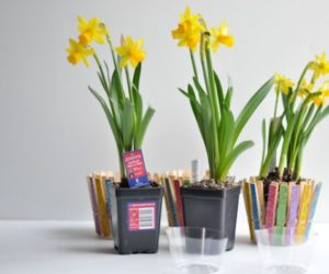 DIY Clothespin Flower Pot