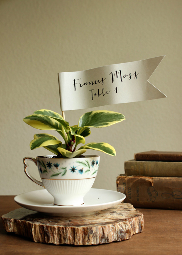 teacup planter favors