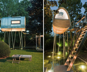 The King of Frogs tree house