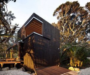 Spacious House Covered with Pohutukawa Trees in New Zealand