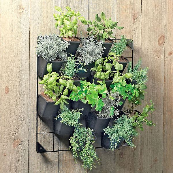 Lovely Vertical Wall Planters Outdoor Part - 7: Eco Friendly Vertical Wall Garden