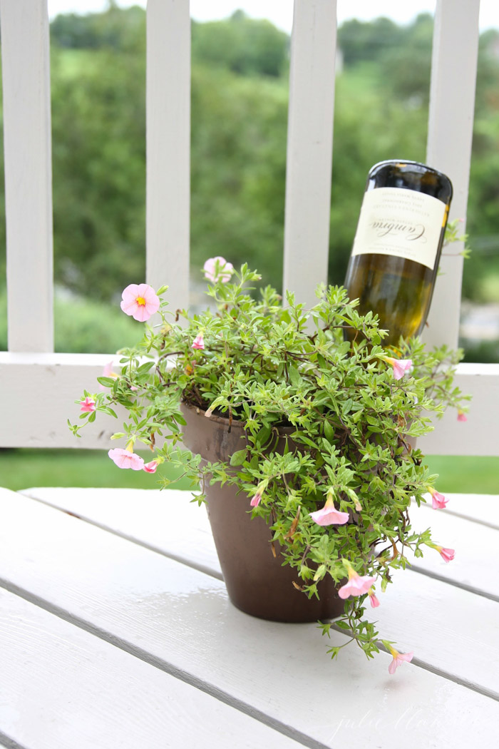 water plants with a wine bottle