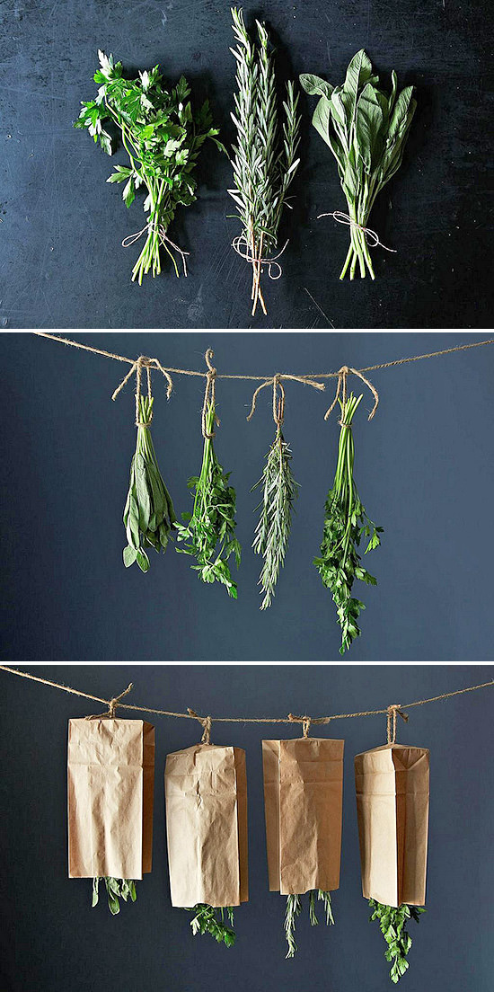 Harvest drying herbs