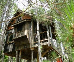 Tree house made from reclaimed materials in Canada